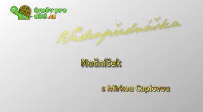 mc05-nocnicek-1038x576